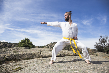 Man doing martial arts poses on a rock LANG_EVOIMAGES