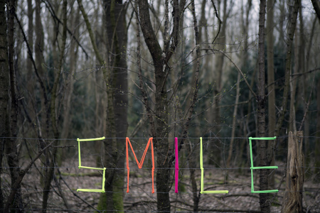 Woven word smile in forest