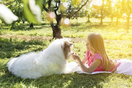 Girl lying with dog on meadow