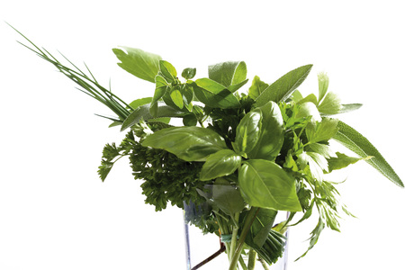 Pot-herbs in glass LANG_EVOIMAGES