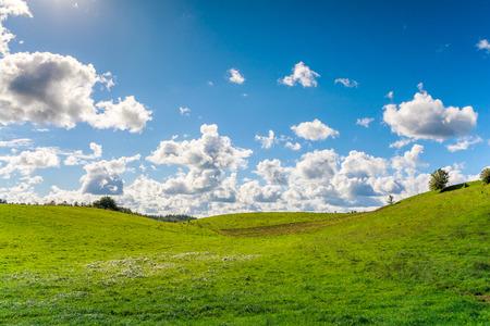 Frühlingslandschaft mit grünen Wiese, im Hintergrund sichtbar blauen Himmel mit Wolken
