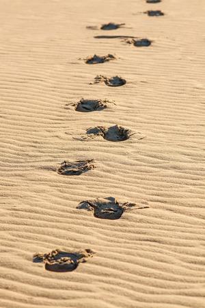 Fußabdrücke am sonnigen heißen Tag im gelben Sand Wüste sichtbar