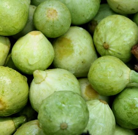 globose: Summer squash, Cucurbita pepo, similar to pattypan squash but more globose in shape and without scalloped edges  Chapan Kadu in India Stock Photo