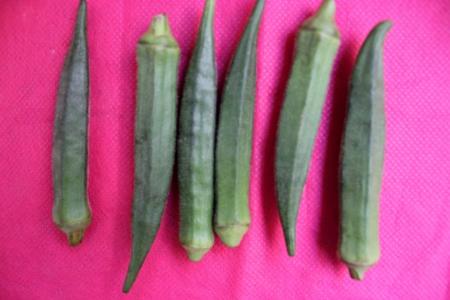 lady s: Okra, se�ora s dedo, gumbo, Abelmoschus esculentus, fruto legumbre cultivada, sobre todo cocinado frito, mucilaginosa