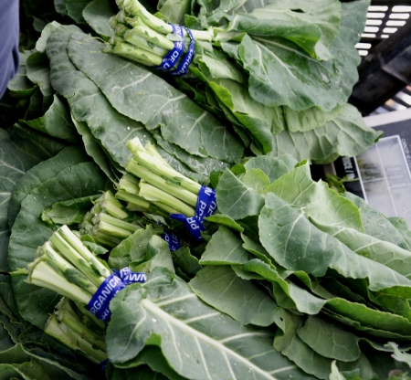 Collards, Brassica oleracea var. viridis, tall herb with flat large leaves, cooked vegetable