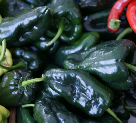 Poblano pepper, Capsicum annuum, a mild chili pepper from Mexico, turning red and hotter when ripe, served coated with egg, stuffed or fried  Dried pepper known as chile ancho Stock Photo