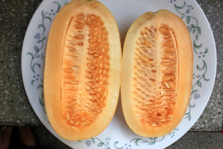 Snap melon, phut, phoot, Cucumis melo susbp  agrestris var  momordica, native of India, young fruits with thicn cucumber like skin and taste, turning pinkish with light pinkish flesh when ripe  Eaten fresh, but somewhat bland