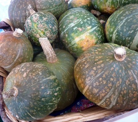 Kabocha squash, Cucurbita maxima, Japanese squash with hard dull green skin with white patches and intense orange colored flesh  It is mostly roasted and tastes like roasted chestnuts  Stock Photo