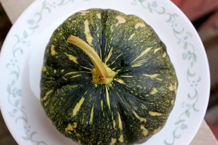 phal: Cucurbita moschata, commonly sold in Indian markets under the name kadu, petha or sita phal  young fruit green with yellowish-white patches  Flesh initially light yellow turning orange yellow when ripe  Commonly cooked as vegetable   Stock Photo