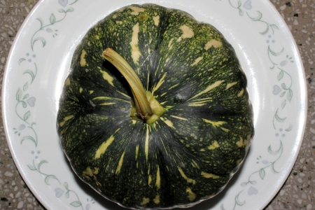 yellowish green: Cucurbita moschata, commonly sold in Indian markets under the name kadu, petha or sita phal  young fruit green with yellowish-white patches  Flesh initially light yellow turning orange yellow when ripe  Commonly cooked as vegetable   Stock Photo