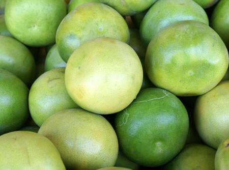 globose fruits: Pomelo, shaddok, Citrus maxima  syn  Citrus grandis, Citrus decumana,tree with yellow to orange fruits, large often up to 16 cm in size, globose, grown as ornamental or dessert fruit