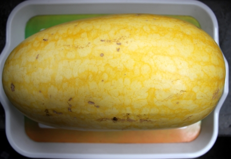mottled skin: yellow-skinned watermelon Vishal, Citrullus lanatus, oblong shaped watermelon with yellow skin mottled with irregular orange stripes  The flesh is red, crisp and sweet