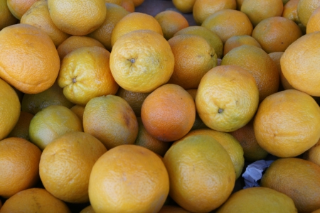 Citrus sinensis, sweet orange, evergreen tree with narrowly winged petioles, globose orange fruit with tight smooth skin and solid core, segments 10-14, pulp sweet, used for juices and as dessert fruit Stock Photo - 20384748
