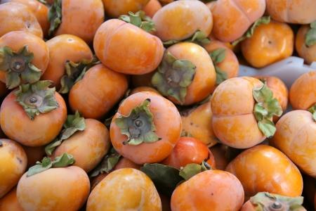 globose: Fuyu persimon, Diospyros kaki, depressed globose tomato like pale orange-yellow fruit with persistent calyx, non-astringent cultivar