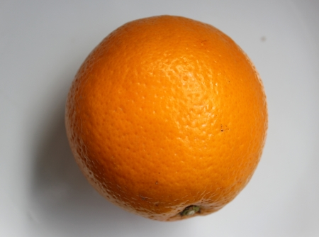globose: Malta, Citrus sinensis, a popular fruit grown in Foothills of NW Himalayas with globose orange fruit with orange-yellow pulp, sweet and delicious   Stock Photo