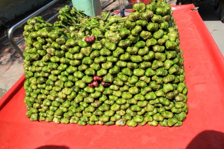 cm: Water chest-nut, Trapa bispinosa, Trapaceae, aquatic plant with floating leaves producing 4-6 cm  long nuts with two spines  Peeled nuts are eaten raw, roasted or ground into flour to make various preparations  Stock Photo