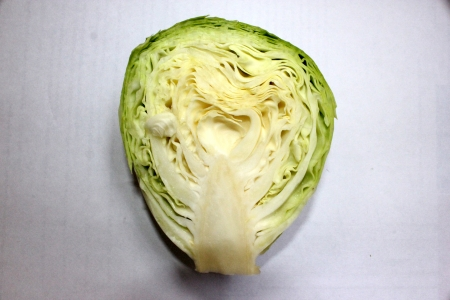 compacted: Green cabbage, Brassica oleracea car  capitata, band gobi, patta gobi, Brassicaceae, popular vegetable with leaves compacted in a large terminal bud  Used as cooked vegetable and in salads and noodles