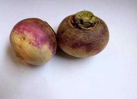 tuberous: Turnip, purple top turnip, white turnip, Brassica rapa subsp  rapa, winter vegetable with tuberous globose root having white flesh  Cooked as vegetable