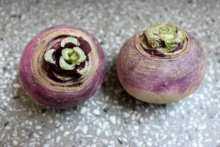 globose: Turnip, purple top turnip, white turnip, Brassica rapa subsp  rapa, winter vegetable with tuberous globose root having white flesh  Cooked as vegetable