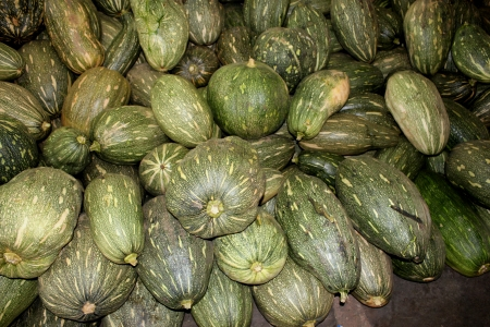 globose: Ayote squash, kadu, Cucurbita moschata, globose to oblong fruit with tough green skin with yellowish-white spots, turning brown when mature  Flesh is initially white, turning yellow when mature  Widely used as vegetable