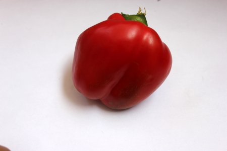 drooping: Red sweet pepper, Capsicum annuum, annual herb Producing large bell shaped drooping fruits, INITIALLY green, turning yellow and finally red Used in salads, stir-fries and pizza toppings