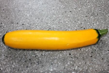 cylindrical: Greenends zucchine dorate, greenends zucchine, Cucurbita pepo, vite Produrre unigue dorato frutta cilindrico con estremit� di colore giallo verde, collegata da una fitta fine gambo verde cucinati come zucchine verdi Archivio Fotografico