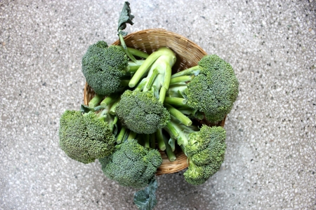 distinct: broccoli, Brassica oleracea var italica, Vegetable crop with green flower head with swollen stalks, buds distinct unlike cauliflower