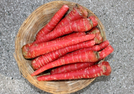 carrot root, Daucus carota, Gajjar in India, conical fleshy roots are rich source of beta carotenes, antioxidants and minerals  Used as salad and cooked vegetable as well as sweet halwa