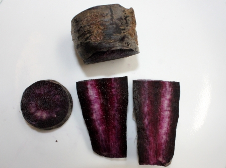 fleshy: Black carrot, Daucus carota, the fleshy roots are sliced and used in preparation of cooling drink Kanji in India along with spices