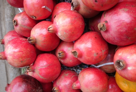 globose: Pomegranate, Punica granatum, anar, nearly globose fruit with crown at tip, fleshy seeds are eaten raw, dried and powdered seeds as spice and condiment