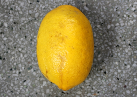 acidic: Galgal, Hill lemon, Citrus pseudolimon, Rutaceae, fruit grown in NW India with oblong fruits finally turning yellow with with white pulp, highly acidic, used as pickle  Stock Photo