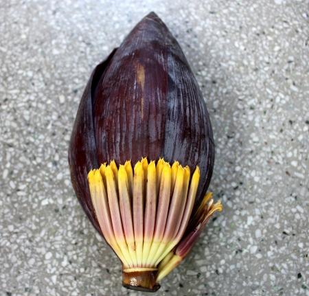 Banana male