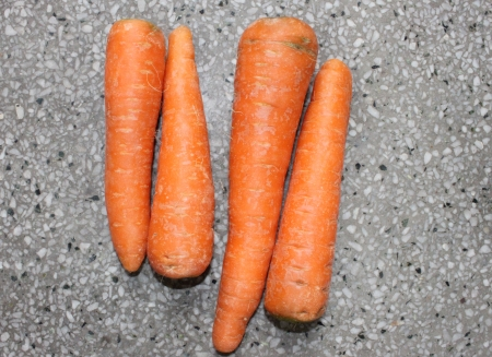 Golden Carrot, Daucus carota, Gajjar in India, conical fleshy roots are rich source of beta carotenes, antioxidants and minerals Used as salad and cooked vegetable as well as sweet halwa