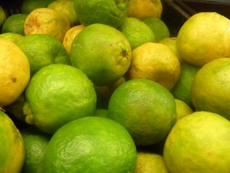 rutaceae: Nagpur naranja, mandarina, Citrus reticulata, Rutaceae, santra Nagpur, famosa naranja cultivada en Nagpur India con grandes frutos con c�scara arrugada y segmentos dulces libremente concertados, de f�cil pelado