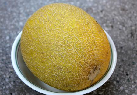 Galia melon, Sarda in India and Persia, Cucumis melo var  reticulatus Stock Photo