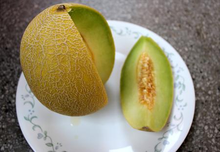 reticulatus: Galia melon