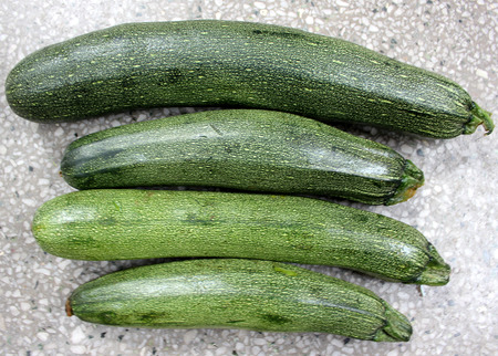 cm: Australian Green Summer squash, cultivar with dark green fruit with light coloured dots, small patches and fiant stripes, narrowed at attachment end, tender with delicious flesh, 20-30 cm long, vegetable Stock Photo