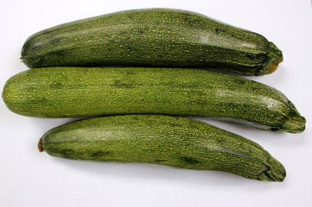 Australian Green Summer squash, cultivar with dark green fruit with light colored dots