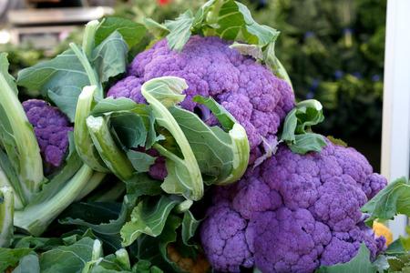 nutrients: Coliflor Graffiti, Brassica oleracea var botrytis, cultivar con cabezas compactas p�rpura, ricos en nutrientes y antioxidantes en especial antocianinas