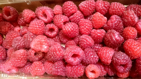 leaflets: Red Raspberry, Rubus idaeus, Woody scramber with prickles, pinnate compound leaves with toothed leaflets, white flowers and red juicy fruit hollow in the center, covered with few sharp hairs