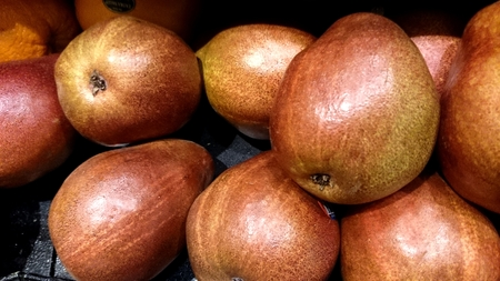 pyrus: Red Anjou Pear, Pyrus communis  Red Anjou , pear shaped fruit with red skin and aromatic delicious creamy flesh Stock Photo