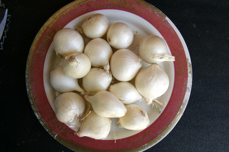 fleshy: White Pearl Onion, Allium cepa, Bulbs usually 2-4 cm in diameter with white papery skin and white fleshy layers within, in true pearl onion  Allium porrum var  sectivum  which has single bulb like garlic, used for pickling, salads, stirfries