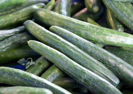bitterness:  Japanese cucumber, Cucumis sativus, cultivar with thin long dark green fruits less than 5 cm thick, thin skin with small prickles, delicious crisp flesh without any bitterness
