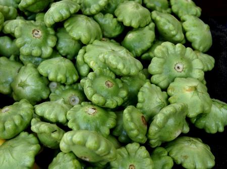 margen: Calabaza de la cacerola de la empanada verde, Cucurbita pepo, vid con flores amarillas producir 5-7 cm a trav�s de frutas en forma de platillo, asemej�ndose a un superior, ligeramente lobulado lo largo del margen, que se utiliza como verdura