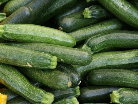enlarged: Zucchini, cultivar di Cucurbita pepo con frutti verdi allungate con puntini giallo chiaro, gambo angolare allargata, utilizzati come verdura, stirfried