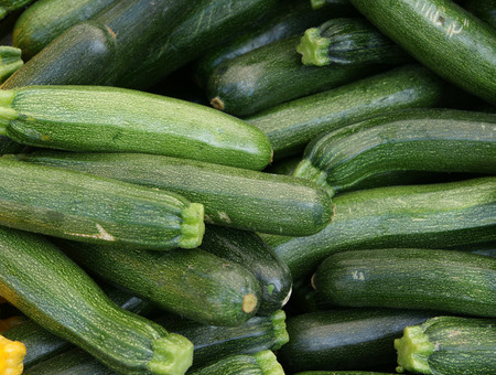 elongated: Zucchini, cultivar of Cucurbita pepo with elongated green fruits with light yellow dots, enlarged angular stalk, used as vegetable, stirfried