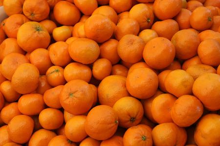 citrus reticulata: Murcott tangerine