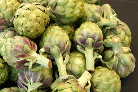 bracts large: Globe artichoke vegetable consisting of unopened globose flower heads surrounded  Stock Photo