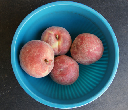 közel: Red peach, Prunus persica, nearly globose red skinned fruit with yellow blush, flesh yellow, sweet and very juicy