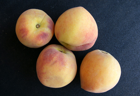 temperate: Yellow peach, Prunus persica, cultivar with yellow skin with greenish yellow blush, flesh yellow, soft, sweet and juicy, a temperate fruit